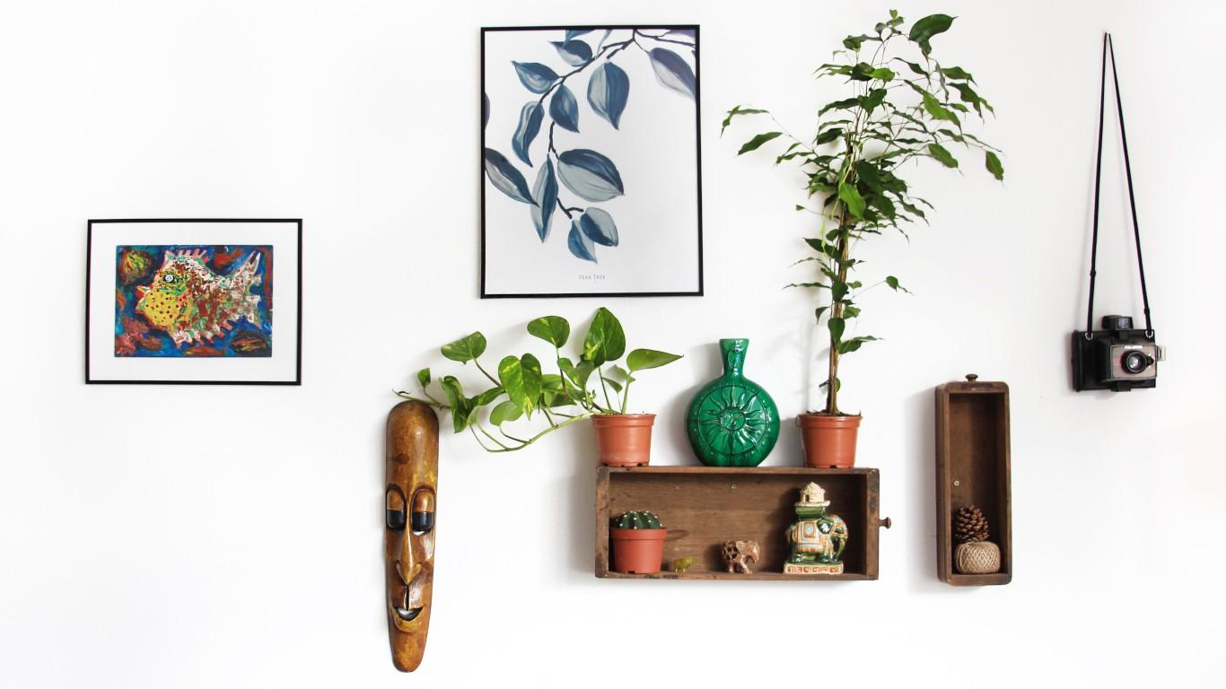 Décoration murale : cadres et objets
